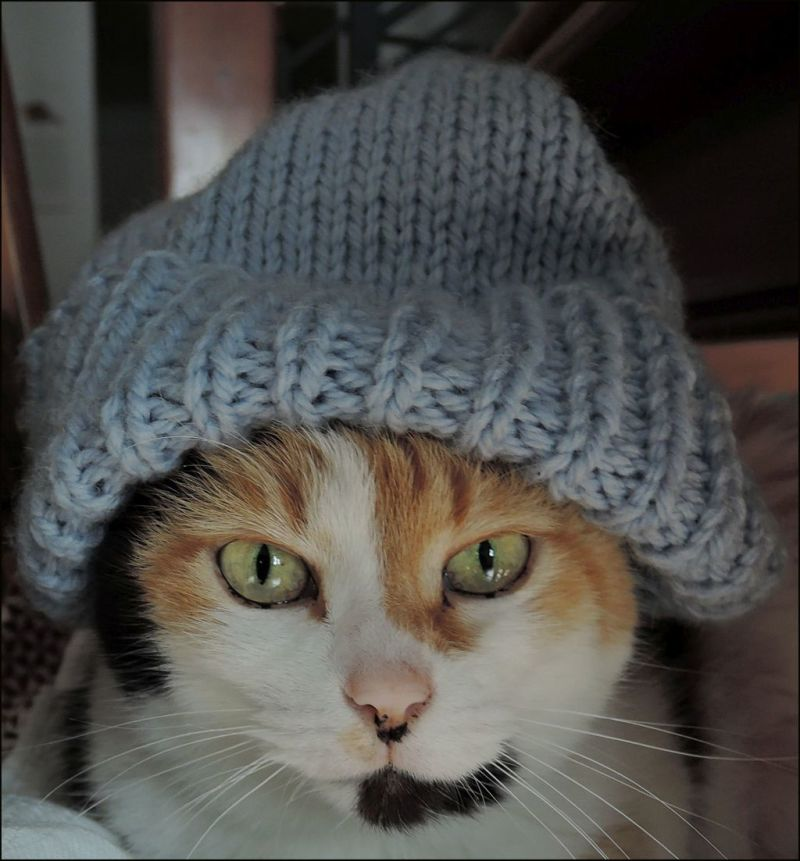 knit Cap Jodi