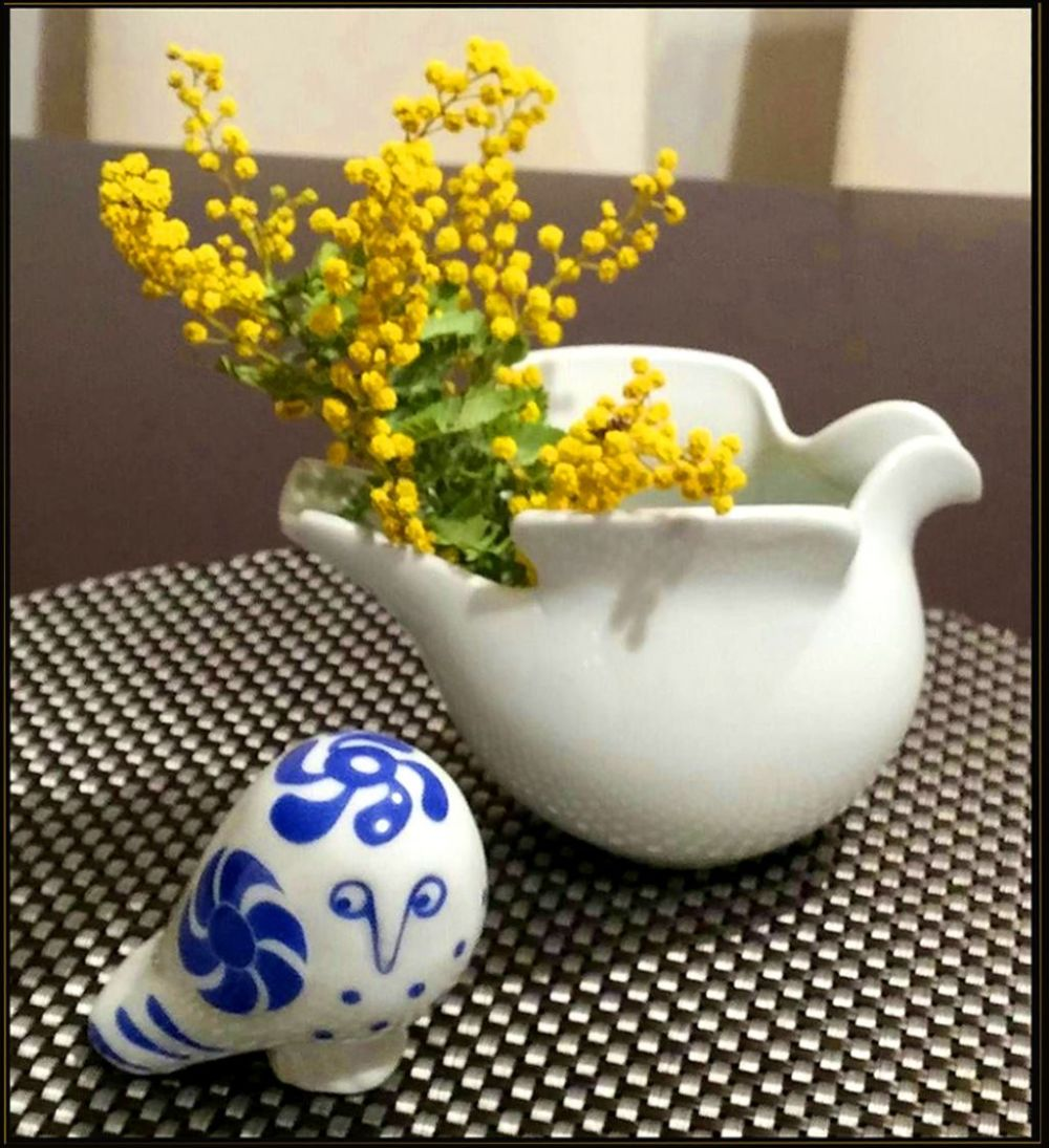 Acacia Dealbata & Lisa Larson's Ceramic Owl