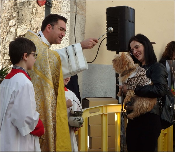 St Francis Day & Blessing of the Animals