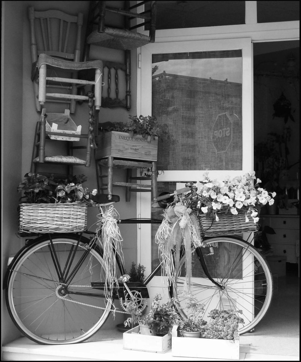 Flowerist's Store Front - Bicycle