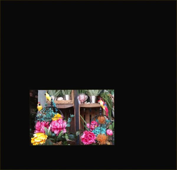Flower shop Window Display