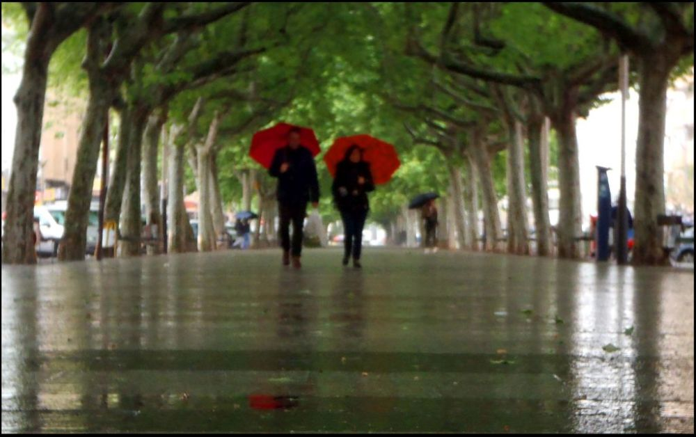 Promenade in The Rain