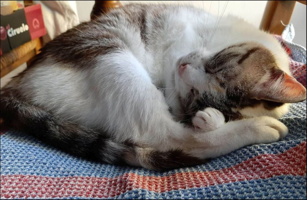 Coco - Sound Sleep