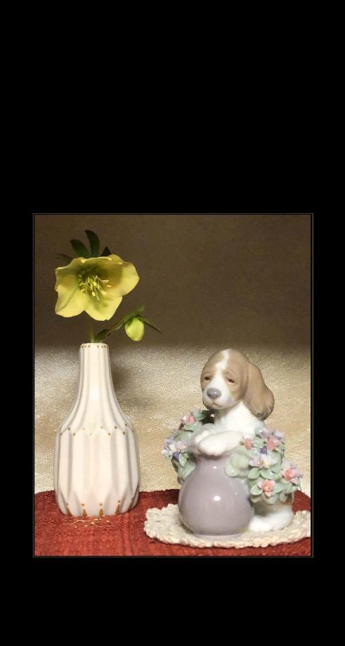 Lladro Beagle Puppy & Yellow Christmas Rose