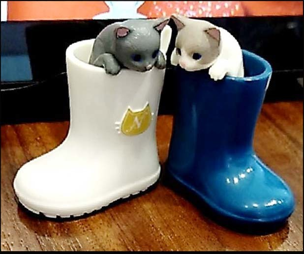 Kittens in The Rain Boots