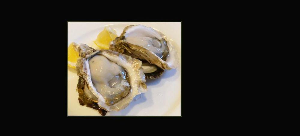 Fresh Oyster - AKO CRYSTAL