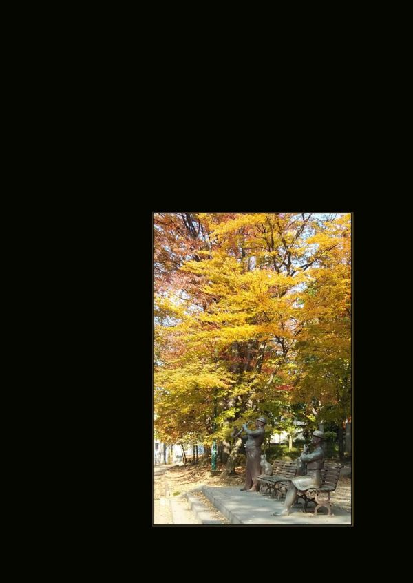 Fuchu no Mori Park - Autumn Leaves Time.