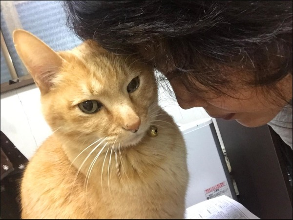 Tora chan & His Owner Sachiko