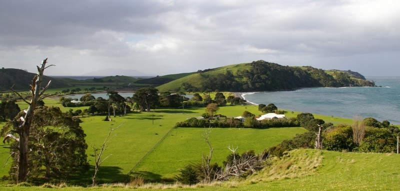 New zealand, around Whangateau..