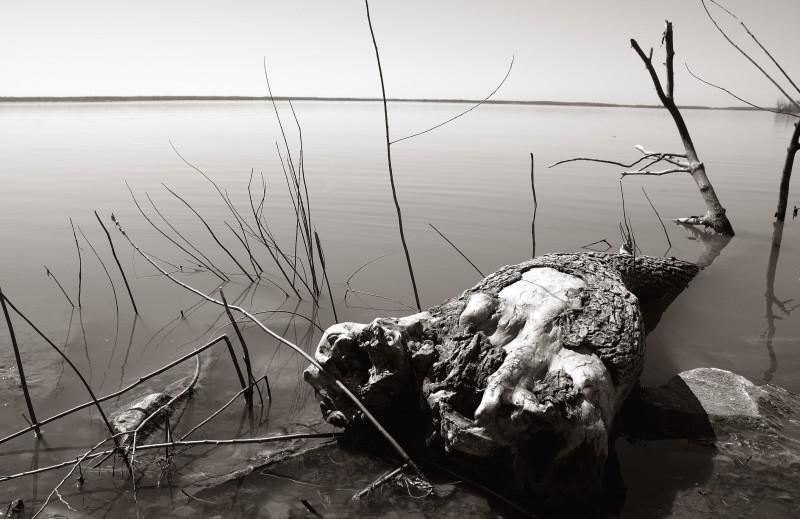 Lac St-Louis
