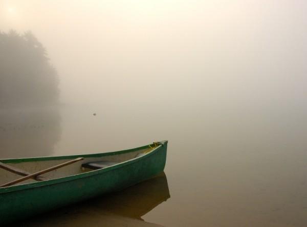 Fog over the lake