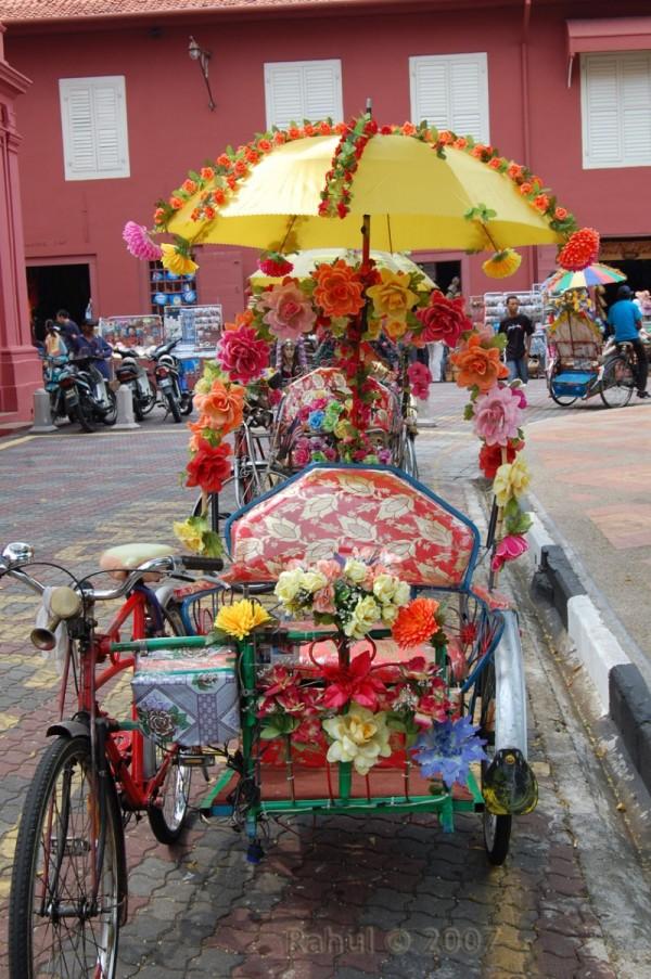 Flowery Ride