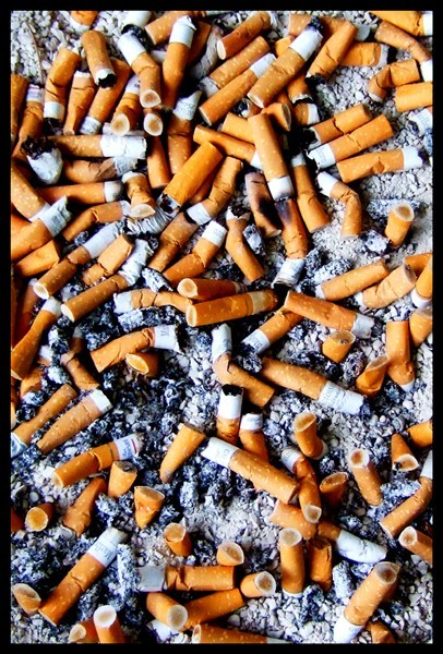 ashes of smoked cigarettes