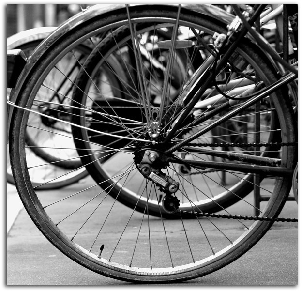 bicycles in town