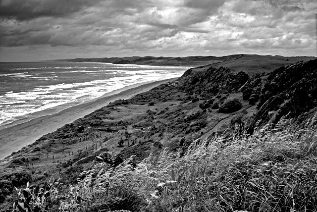 View of Raglan coastline