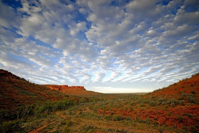 Red Centre - Kings Canyon I