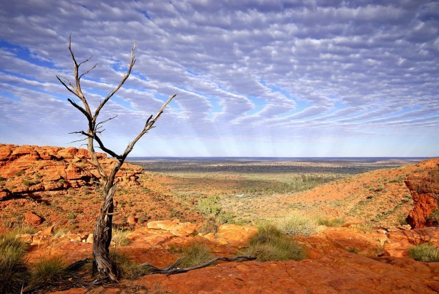 Red Centre - Kings Canyon III