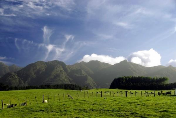Kaimai Range