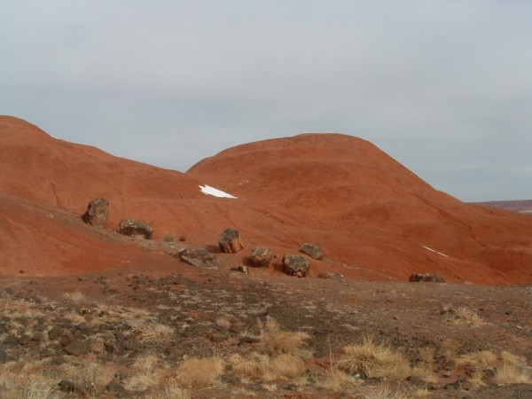 In the painted desert