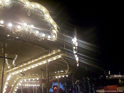 Round and Round Carousel