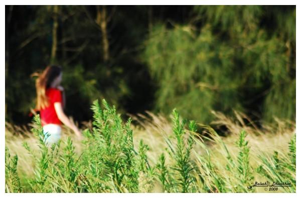 Red-ish roaming, Green-ish glow......[Suburb Life]
