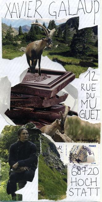 Bouquetins sur le rocochocolat...