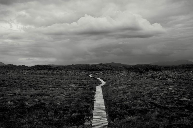 WOODEN WALKWAY, HANDA ISLAND