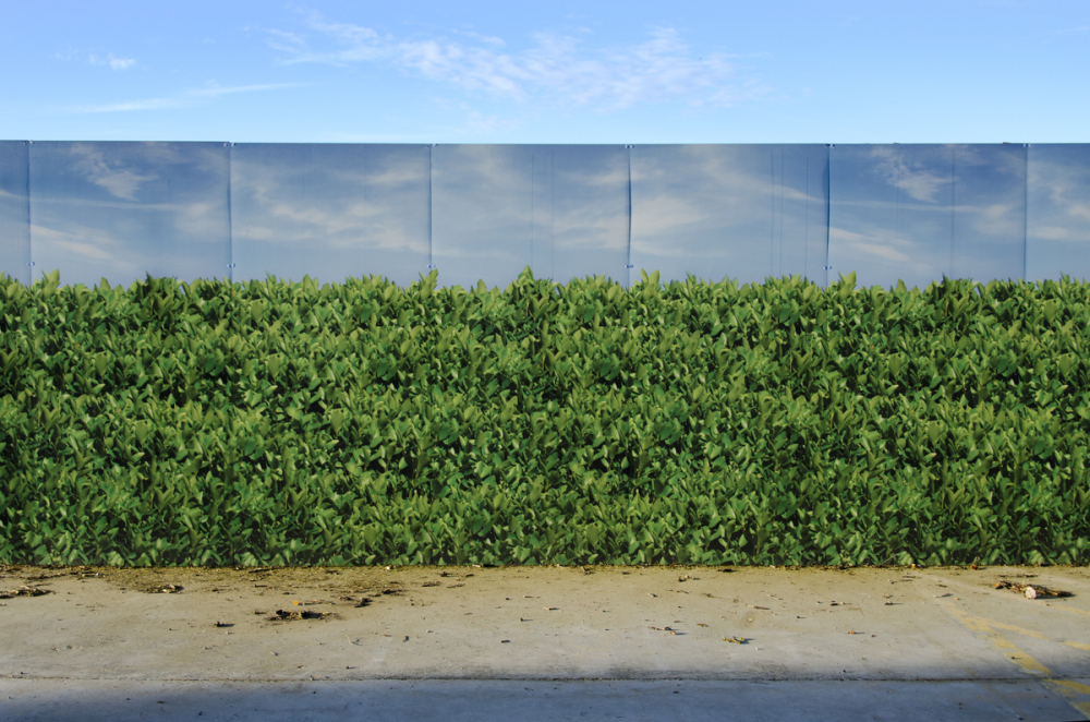 PROPERTY DEVELOPERS, HEDGE AND SKY