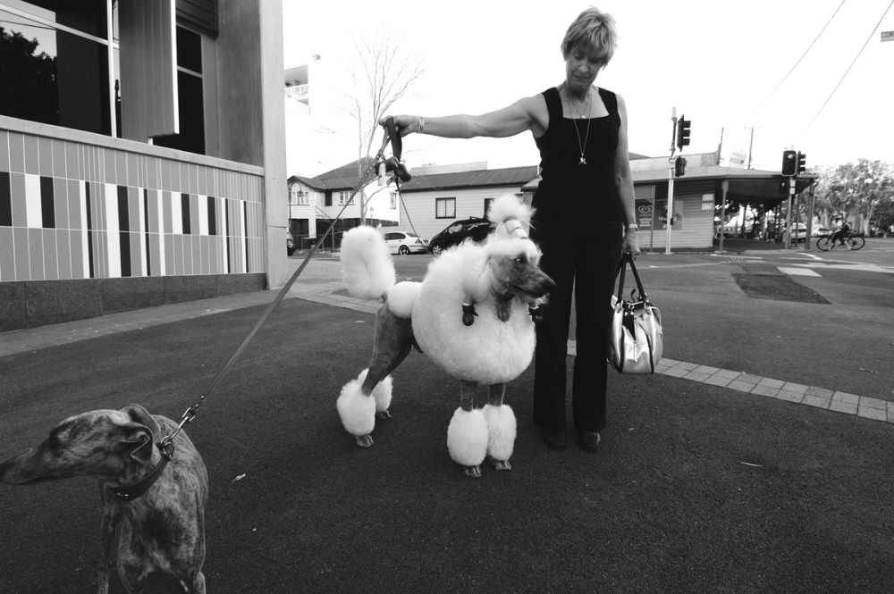 Woman with dogs in Brisbane street
