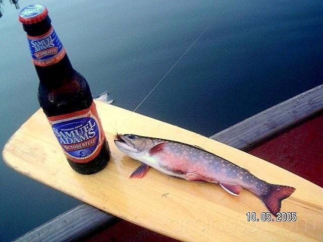 Brookie and Beer