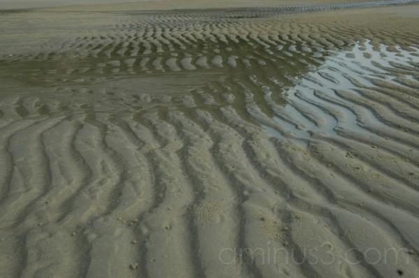 Sand dunes... back to desert?