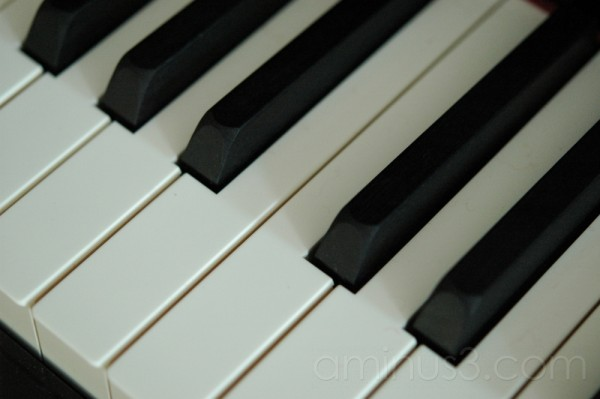 Tribute: My Music Instruments