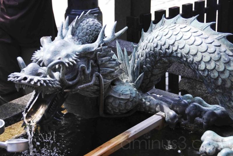 An up close shot of the dragon
