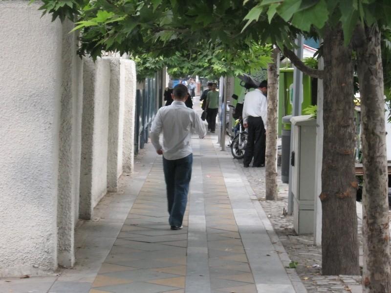 خیابان ولیعصر / Valiasr Street