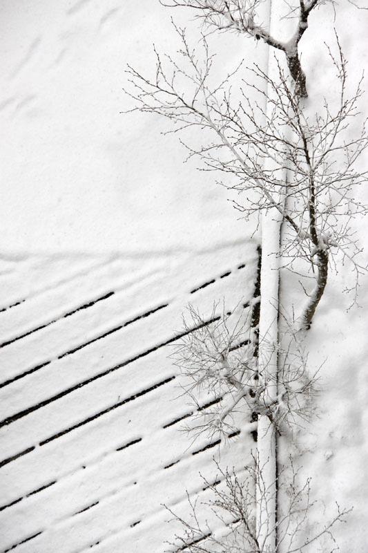 Snowly
