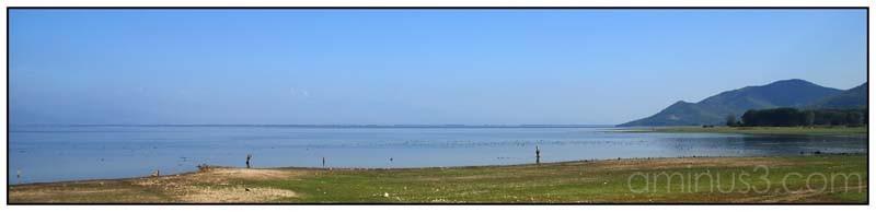 kerkini lake V