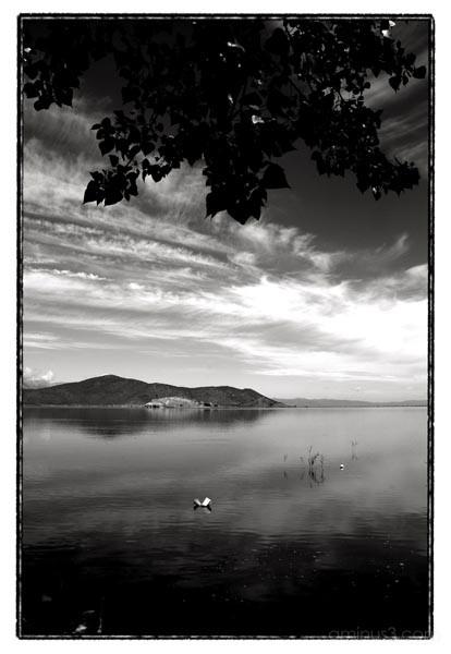 lake island sky tree