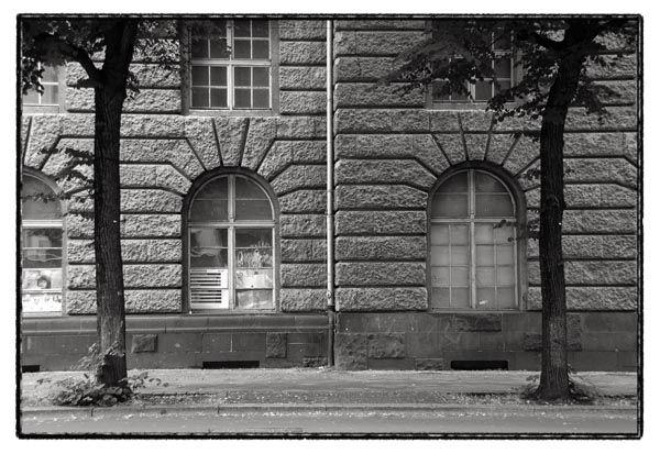 wall trees windows berlin