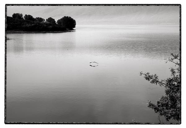 kerkini lake