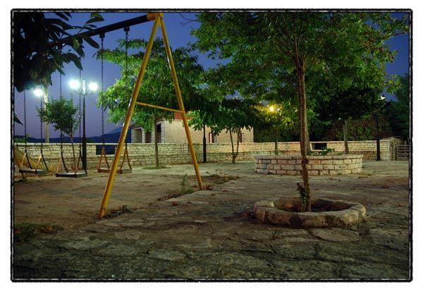 square night trees empty
