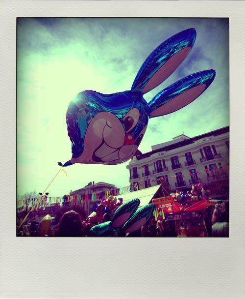 blue rabbit in the air