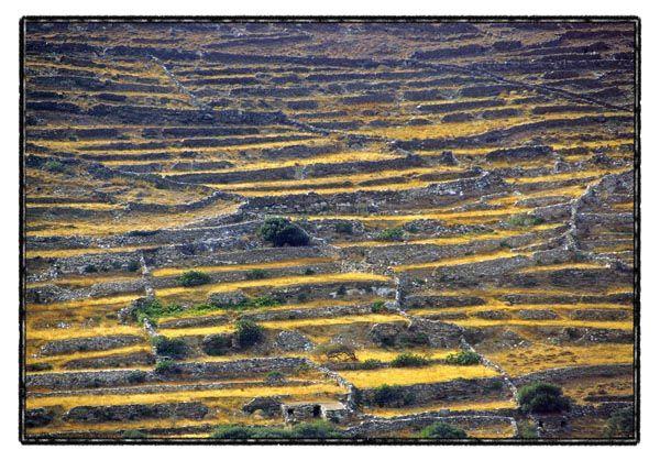 tinos landscape 2/3