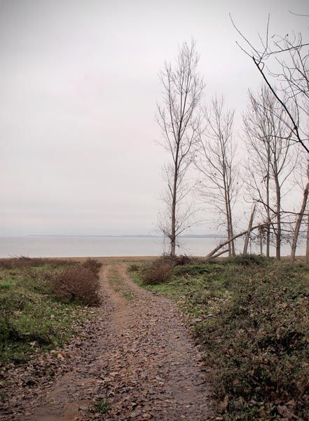 road to the lake