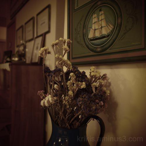 flowers & boat