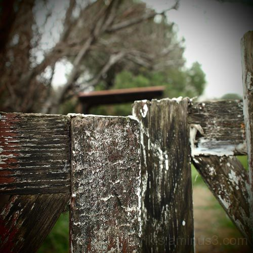 fence 1/2