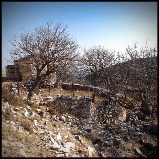 lost village 5