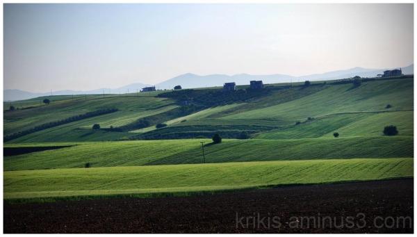fields 5