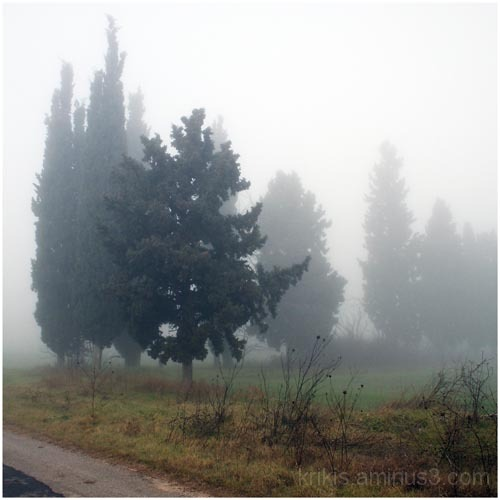 a ride in the fog I