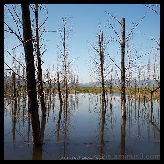 doirani lake