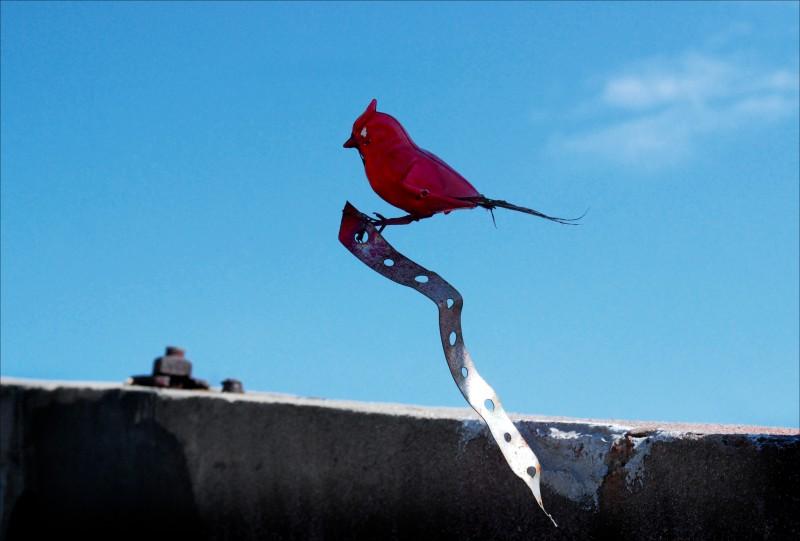 Red plastic bird, blue sky, abandoned building.